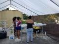Dorado-Puerto-Rico-plants-4